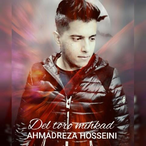 دانلود موزیک جدید احمدرضا حسینی دل تورو میخواد